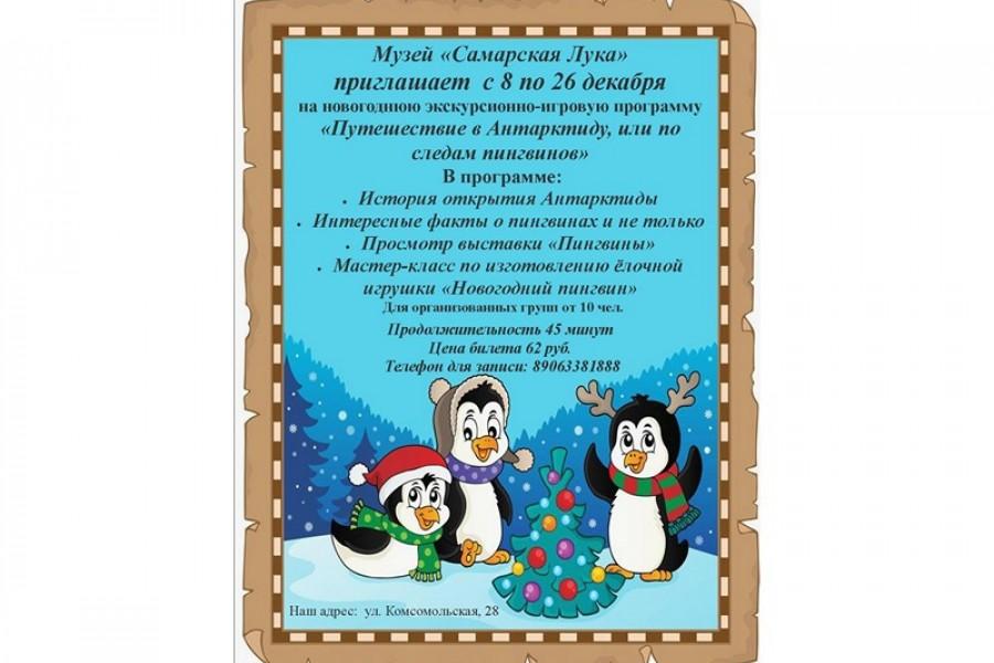 «Приглашаем на новогоднюю программу»